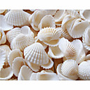 Wedding Décor Beach Themed Seashell  Shower Table Decorations (Pack of 90)