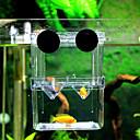 水族館の飼育箱(10センチメートルX 7センチメートルX 13センチメートル)