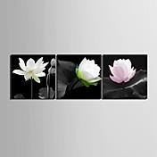 Reproducción en lienzo de Arte Floral Elegant Lotus Set de 3