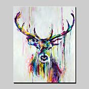 手描きの 抽象画 動物 ポップアップ 縦長,Modern 1枚 ハング塗装油絵 For ホームデコレーション