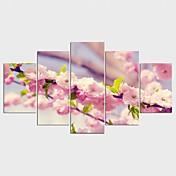 Strukket Lærred Print Blomstret/Botanisk Stil Moderne,Fem Paneler Kanvas Alle Former Kunsttryk Vægdekor For Hjem Dekoration