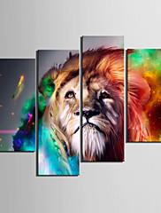Protezala Canvas Art Print Animal Lion Set od 4