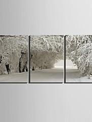 e-HOME® plátně umění sníh scény dekorace malování set of 3