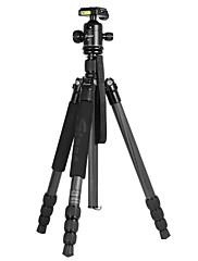 カメラ柔軟なため、高品質のプロフェッショナルカーボンファイバー三脚f3425z sinno