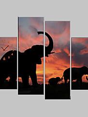 Ispruži platnu print Art životinja slonovi Set od 4