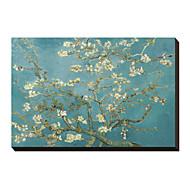 Kvetoucí větve mandlovníku, San Remy, cca 1890 Vincent van Gogh Famous Reprodukce na plátně