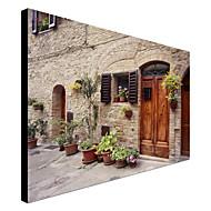 su tela arte fiori paesaggio sul muro, Toscana, Italia di Monte Nagler pronto da appendere