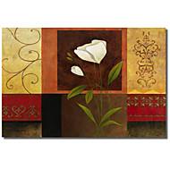 Stampato su tela bianca floreale di Pablo Esteban, con telaio allungato