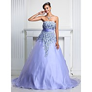 Prom / Formal Evening / Quinceanera / Sweet 16 Dress - Floral Plus Size / Petite A-line / Ball Gown Strapless Court Train Organza with
