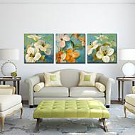 Trasferimenti su tela Art Floral Spring Set di 3