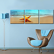 Sträckt Canvastryck konst Landskap Sandbeach Set av 3
