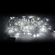 10M 100-LED White Light LED Christmas Decoration String Light (220V)