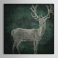 Trasferimenti su tela Art Emerald Cervo per Colore Bakery