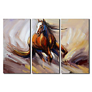 Hand Painted Oil Painting Animal Running Horse with Stretched Frame Set of 3