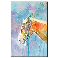 IARTS®Hand Painted Oil Painting Animal Horse with Stretched Frame