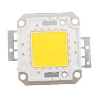 ZDM ™ 20w 1700-1800lm high power geïntegreerde LED 4500K natuurlijke witte dc32-35v 600ua