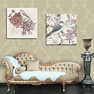 Stretched Canvas Art Decorative Painting Flowers And Birds Set of 2