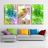 Stretched Canvas Art Colorful Leaves Decorative Painting Set of 3