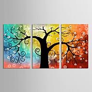 kangas sarja 3 kasvitieteellinen värikäs toiveikas elämä puu Canvastaulu valmis ripustaa
