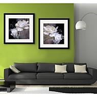 e-Home® inramade arbetsytan konst, vit ros inramat kanfastryck uppsättning av 2