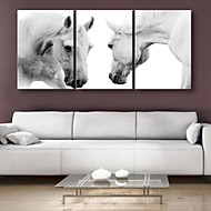 e-Home® Sträckta Canvas konst driften hästen dekoration målning uppsättning av 3