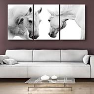 е-Home® натянутым холстом еси коня на скаку декоративной живописи набор 3