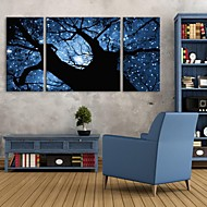 E-HOME® Stretched LED Canvas Print Art The Shadows Under The Starlight Flash effect LED Set of 3