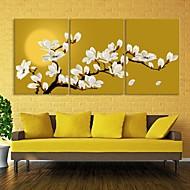 e-home® lona esticada magnólia arte set decoração pintura de 3