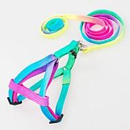Dog Harness / Leash / Slip Lead Adjustable/Retractable Rainbow Nylon