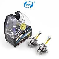 hm® H4 12V 60 / 55W lâmpada halógena de farol lâmpadas amarelas (um par)