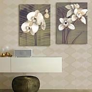 e-Home® venytetty kankaalle art kukka koristelu maalaus sarja 2