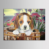 IARTS Oil Painting Modern Animal Lovely Dog Little Popy Hand Painted Canvas with Stretched Frame