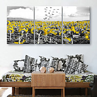 E-HOME® Stretched Canvas Art Sunflower Decorative Painting Set of 3