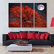 e-Home® allungata tela arte albero decorazione rossa pittura set di 3