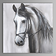 peinture à l'huile moderne main cheval abstraite toile avec cadre étiré peint