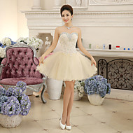 Women's Champagne A-Line Lace Crystal Decorated Strapless Above Knee Cocktail Party Bridesmaid Mini Dress