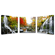 VISUAL STAR®Landscape Stretched Canvas Print 3 Pannel Home Decoration Arts