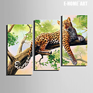 E-HOME® Stretched Canvas Art A Leopard on The Tree Decoration Painting Set of 3