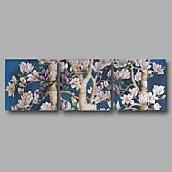 Stretched Canvas Print Ready to Hang Three Panels Wall Art Flowers White Blossom Blue Modern