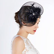 Women's Tulle Headpiece-Special Occasion Birdcage Veils