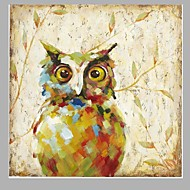 손으로 그린 동물 사각형,유럽 스타일 1판넬 캔버스 항으로 그린 유화 For 홈 장식