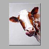 Handgemalte Tier Modern Ein Panel Leinwand Hang-Ölgemälde For Haus Dekoration