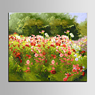Beautiful Landscape Oil Painting DIY Stretcher Good Quality