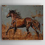 Ručně malované ZvířeModerní Jeden panel Plátno Hang-malované olejomalba For Home dekorace