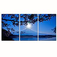 Abstract / Vrije tijd / Landschap / Fotografisch / Modern / Romantisch / Pop Art / Fantasie Canvas Afdrukken Drie panelen Klaar te hangen