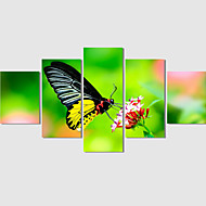 Canvas Print Art Abstract Painting Set Of 5 Nature Scenery Pictures Painting On The Wall Home Decor