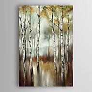 mão pintado óleo paisagem pintura abstrata da água de árvores de vidoeiro com esticada quadro arts® 7 parede