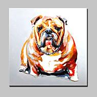 peinture à l'huile peinte amis animaux chien lager main sur le mur de toile art picture frame whit décor à la maison
