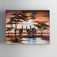 60x80CM Hand-Painted Modern Abstract Elephant Sunset African Landscape Oil Painting With Frame Ready to Hang