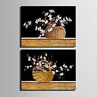Botanikus Vászon nyomtatás Két panel Kész lógni,Függőleges
